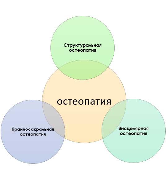 разделы остеопатии